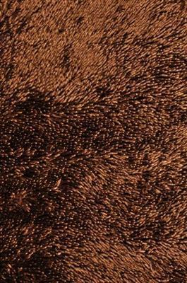 kusový koberec SHINE SHAGGY