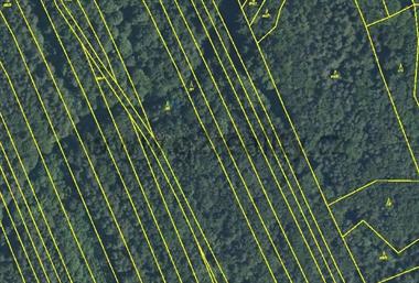 Prodej lesů Dolní Lhota, Sehradice